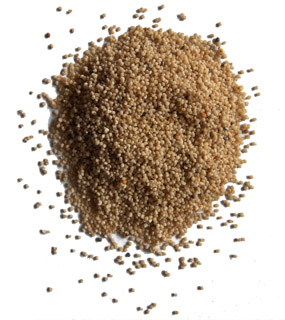 Kus Kus - Poppy seeds