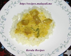 Chayote Squash Curry