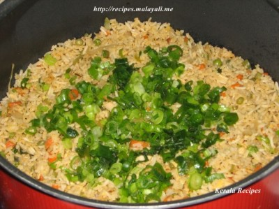 Chicken Fried Rice garnished with spring onions