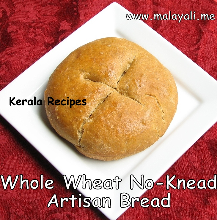 Whole Wheat Artisan Bread